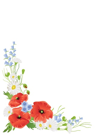 poppy leaf: an illustration of a corner arrangement of summer wildflowers with poppies harebells and daisies on white Illustration