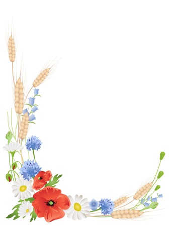 an illustration of an arrangement of summer wildflowers with wheat poppies harebells and daisies on white Ilustrace