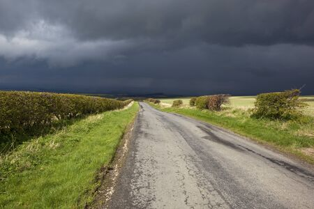 grass verge: Paesaggio primavera con le nubi di tempesta scure su una strada rurale con aree verdi e le siepi Archivio Fotografico