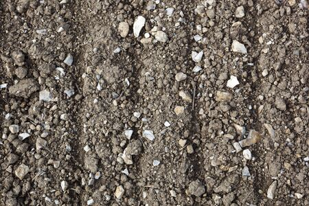 chalky: a background image of chalky limestone soil with patterns texture and lines