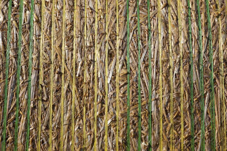 a close up detail patterns and texture of a straw bale wrapped with plastic banding  photo