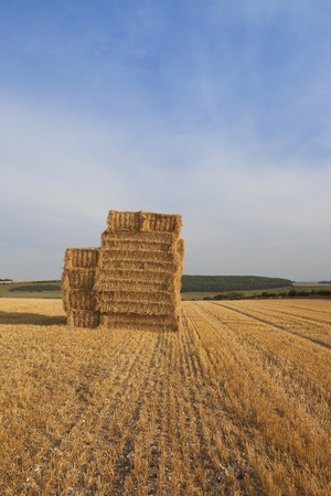 a stack of square bales of straw in a stubble field in the scenic yorkshire wolds england in late summer at harvest time under a blue cloudy sky photo