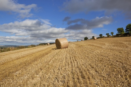 a late summer stubble field with round bales on a scenic hillside in the yorkshire wolds england under a blue cloudy sky at harvest time photo