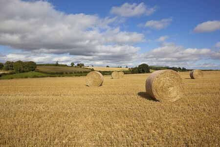 rolling hills and patchwork fields with cloudy blue sky stubble and straw bales in the agricultural landscape of the yorkshire wolds england photo