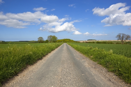 english countryside: a small rural road in the yorkshire wolds england going through scenic farmland under a blue cloudy summer sky