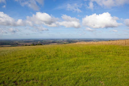 vale: the scenic vale of york viewed from a grassy meadow under a blue cloudy sky in late summer