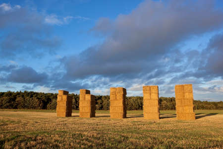 tall stacks of straw bales and distant woodlands in dramatic evening light  photo