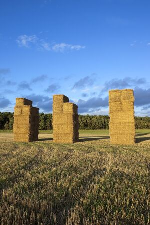 golden straw bale stacks in a stubble field beside a woodland under a blue cloudy sky in late summer photo