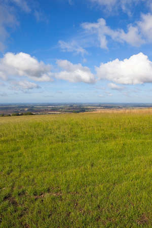vale: a view of the vale of york from the yorkshire wolds england under a blue cloudy sky in late summer Zdjęcie Seryjne