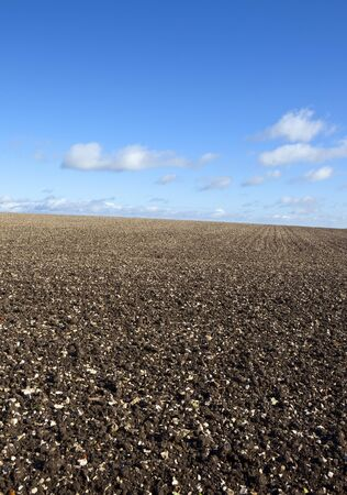 chalky: a chalky hillside plowed field under a clear blue sky on the yorkshire wolds england in autumn