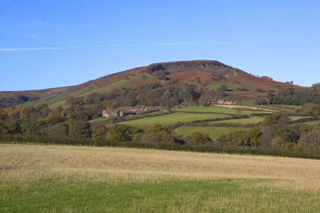 english countryside: rudland rigg on the north york moors with autumn fall colors under a clear blue sky