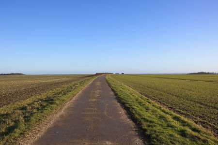 wide open spaces: wide open spaces of the arable landscape of the yorkshire wolds in winter