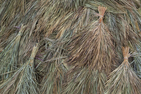 background patterns and textures of bundles of sugar cane leaves dried as hay for livestock food photo