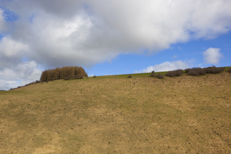 hillsides: springtime clouds over dry grassy hillsides with mole hills in the farming landscape of the yorkshire wolds Stock Photo