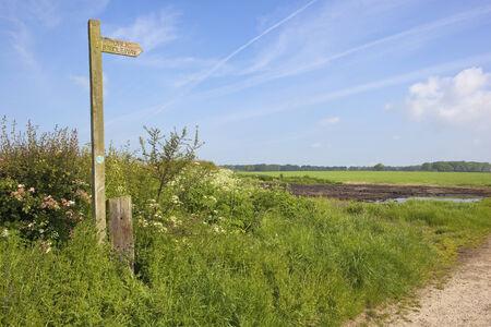 grass verge: un sentiero pubblico segno di legno in campagna inglese, con siepi di biancospino e campi verdi sotto un cielo blu