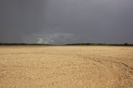 chalky: a newly plowed field with chalky soil and hedgerows under a dark stormy sky in summer