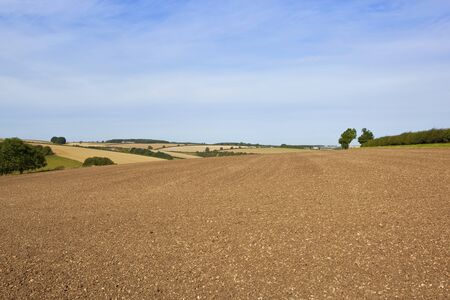 chalky: a newly plowed field with chalky soil overlooking late summer agricultural scenery in the yorkshire wolds under a blue sky