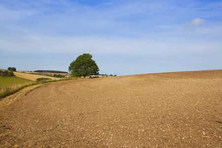 chalky: a plowed chalky field with scenic views of the yorkshire wolds under a blue sky in late summer