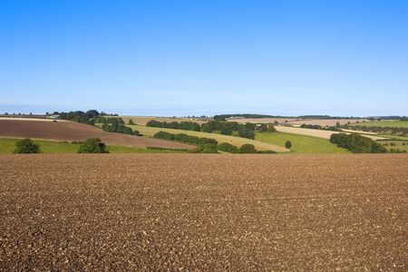 chalky: a plowed chalky field in a scenic landscape in the yorkshire wolds england at autumn time under a clear blue sky Stock Photo