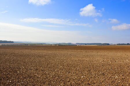 chalky: cultivated chalky soil in the yorkshire wolds england under a blue cloudy sky at harvest time