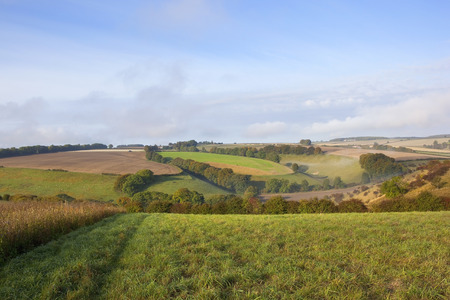 hedgerows: an autumnal scenic valley with hawthorn hedgerows and dry grasses in the yorkshire wolds england under a blue cloudy sky on a sunny day Stock Photo