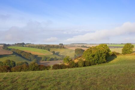 hedgerows: a scenic valley with trees and hedgerows in the agricultural landscape of the yorkshire wolds england in autumn under a blue sky