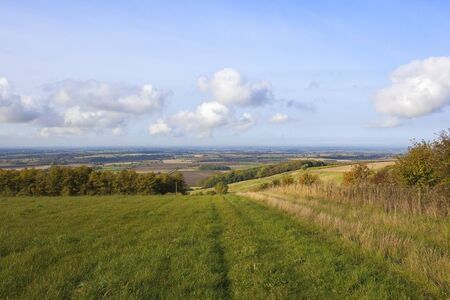 vale: a grassy meadow with a view of the vale of york england under a blue cloudy sky in autumn