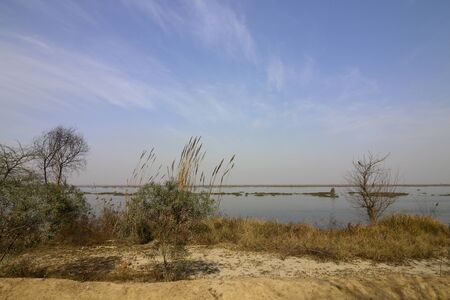 punjab: beautiful landscape of harike wetlands near amritsar punjab india under a blue sky in springtime Stock Photo
