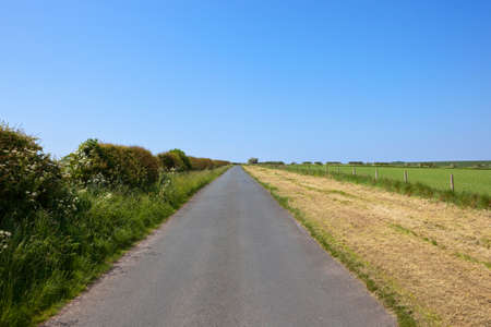 hedgerows: a country road in the yorkshire wolds with hawthorn hedgerows under a blue sky in summer Stock Photo
