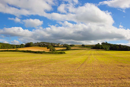 hay field: rolling scenic agricultural landscape with a freshly harvested hay field in the yorkshire wolds under a blue cloudy sky in summer Stock Photo