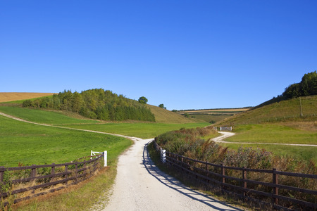 a white chalky bridleway with fencing and woodland copse in the yorkshire wolds under a clear blue sky in summer