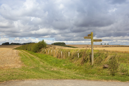 sign post: a scenic bridleway with wooden sign post and hawthorn hedgerow under a blue cloudy sky in summer