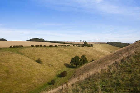 hedgerows: horsedale valley in the yorkshire wolds with trees and hedgerows under a blue sky in late summer Stock Photo