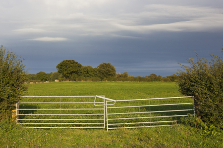 a metal farm gate and hawthorn hedgerow enclosing a green meadow with wildflowers in late summer under a dramatic sky Stock Photo