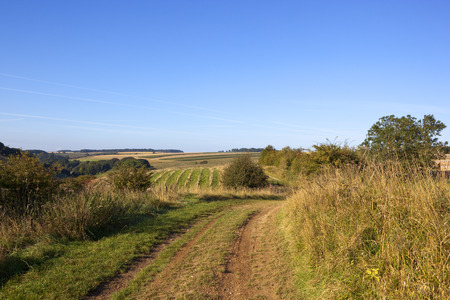 a scenic section of the minster way bridleway with views of patchwork fields under a blue sky in late summer