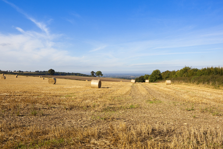 round straw bales in a hillside field in autumn with a view of the vale of york under a blue sky with wispy white cloud