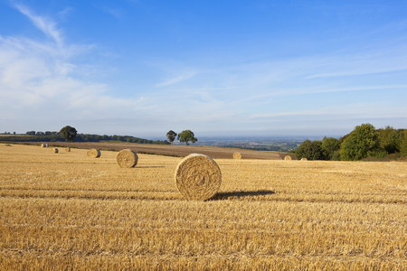 wispy: round bales in a straw stubble field with a view of the vale of york under a blue sky with wispy clouds Stock Photo
