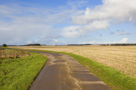 wispy: a concrete footpath in agricultural farmland in autumn under a blue sky with wispy cloud in the yorkshire wolds