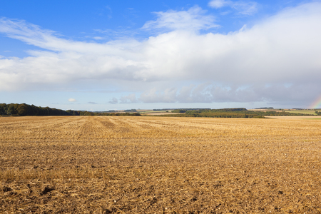 a harvested field with patchwork fields and woodlands in the yorkshire wolds in autumn under a blue cloudy sky