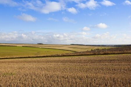 an agricultural landscape with a straw stubble field in rolling hills under a blue cloudy sky in the yorkshire wolds Stock Photo