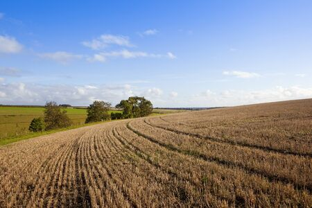 curving lines and patterns in a harvested straw stubble field with trees hills and hedgerows under a blue cloudy sky in autumn Stock Photo
