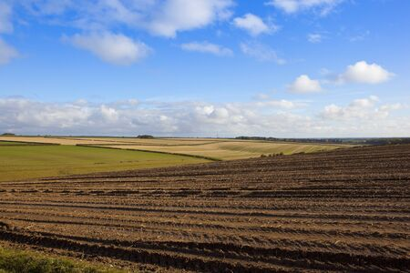 a muddy harvested potato field in scenic agricultural land with lines and patterns under a blue cloudy sky in the yorkshire wolds