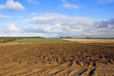 a plowed field with tyre tracks and puddles in a colorful yorkshire wolds landscape with hills and hedgerows under a blue sky with fluffy white clouds