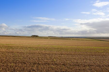 a straw stubble field with patterns and a view of the vale of york in a yorkshire wolds landscape under a blue cloudy sky in autumn