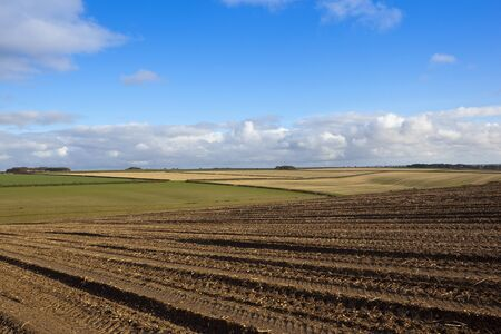a patterned harvested field in a yorkshire wolds landscape with hills and hedgerows under a blue cloudy sky in autumn Stock Photo