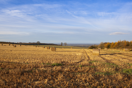 wispy: round bales in a golden straw stubble field landscape with views of the vale of york under a blue sky with wispy white cloud in autumn Stock Photo