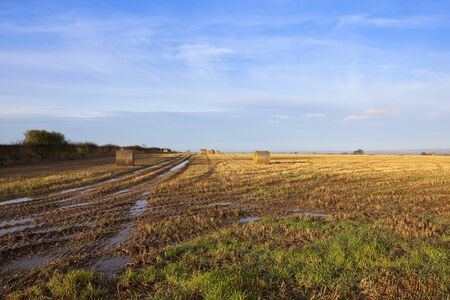 muddy tracks: a muddy autumn hillside straw stubble field with tyre tracks and round bales looking out over a view of the vale of york in a yorkshire wolds landscape under a blue cloudy sky