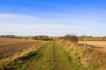 a picturesque bridleway with a hawthorn hedgerow and red berries in a yorkshire wolds landscape at harvest time in autumn under a blue cloudy sky Stock Photo