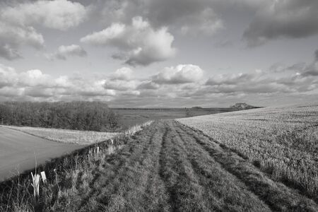 hedgerows: a grassy bridleway beside a valley with crops and hedgerows in a yorkshire wolds landscape under a cloudy sky in autumn Stock Photo