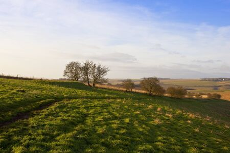 a footpath through a green meadow with a collapsed burial mound on a hillside in a yorkshire wolds landscape in winter Stock Photo